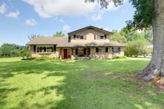 22581  Ridgewood Drive  , Robertsdale, AL 36567 (MLS #213702) :: Jason Will Real Estate