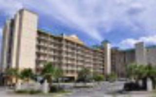 27284  Gulf Rd  306, Orange Beach, AL 36561 (MLS #216568) :: Jason Will Real Estate