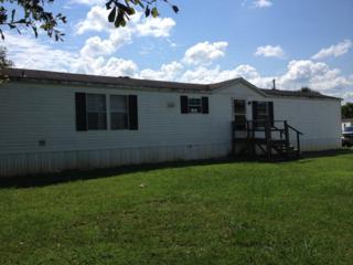 24428 N Emerald Ct  , Loxley, AL 36551 (MLS #217479) :: Jason Will Real Estate