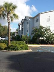 2200  2nd Street  103-B, Gulf Shores, AL 36542 (MLS #218094) :: Jason Will Real Estate