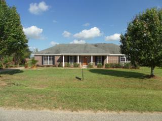8912  Sherman Rd  , Foley, AL 36535 (MLS #218172) :: Jason Will Real Estate