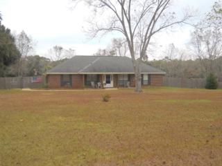 9635  County Road 24  , Fairhope, AL 36532 (MLS #219326) :: Jason Will Real Estate