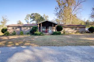 45660  Old Carney Rd  , Bay Minette, AL 36507 (MLS #219550) :: Jason Will Real Estate
