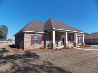 22375  County Road 12  , Foley, AL 36535 (MLS #220870) :: Jason Will Real Estate