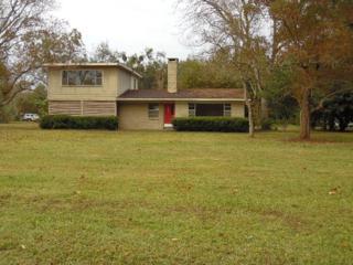 704 W Fern Avenue  , Foley, AL 36535 (MLS #221006) :: Jason Will Real Estate