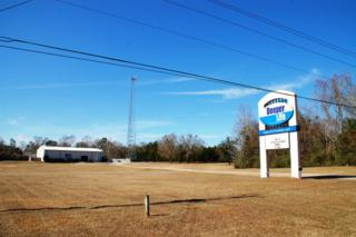 3360  Dawes Rd  , Mobile, AL 36695 (MLS #221366) :: Jason Will Real Estate