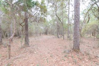 0  County Road 99  , Lillian, AL 36549 (MLS #223186) :: Jason Will Real Estate