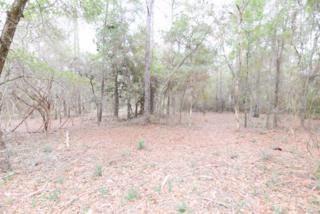 0  County Road 99  , Lillian, AL 36549 (MLS #223188) :: Jason Will Real Estate
