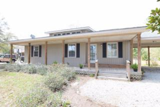 6829  Piney Woods Rd.  , Foley, AL 36535 (MLS #223263) :: Jason Will Real Estate