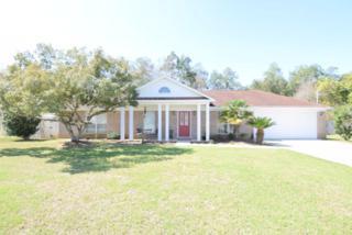 13071 W Pointer Dr  , Foley, AL 36535 (MLS #223600) :: Jason Will Real Estate