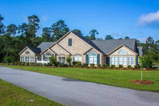 1403  Holmes Ave  1403, Foley, AL 36535 (MLS #224055) :: Jason Will Real Estate