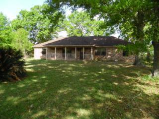 405  Verbena Lp  , Foley, AL 36535 (MLS #225054) :: Jason Will Real Estate