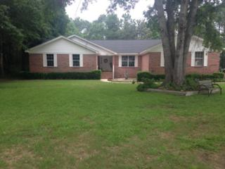 512 W 23rd Avenue  , Gulf Shores, AL 36535 (MLS #225172) :: Jason Will Real Estate