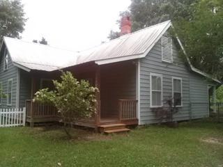 24300  County Road 20  , Elberta, AL 36530 (MLS #225176) :: Jason Will Real Estate