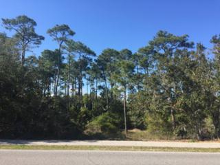 1389 S River Road  , Orange Beach, AL 36561 (MLS #226434) :: Jason Will Real Estate