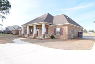 22375  County Road 12  , Foley, AL 36535 (MLS #220870) :: Jason Will Real Estate