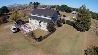 16266  Mcdowell Rd  , Bay Minette, AL 36507 (MLS #219063) :: Jason Will Real Estate