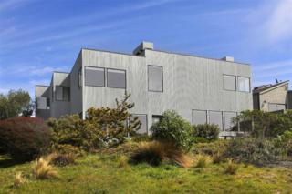 20390  Osprey Dr  , Bodega Bay, CA 94923 (#21403900) :: RE/MAX PROs