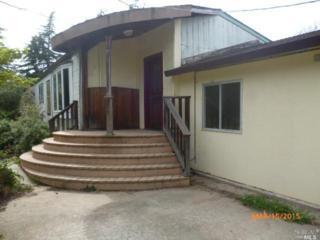 5570  Mcfarlane Rd  , Sebastopol, CA 95472 (#21507903) :: RE/MAX PROs