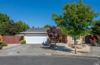 2430  Teale Ct  , Santa Rosa, CA 95401 (#21512473) :: RE/MAX PROs