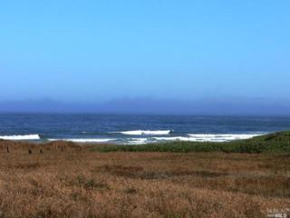 1291-1301 N Main St  , Fort Bragg, CA 95437 (#21512653) :: RE/MAX PROs