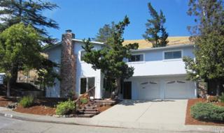 890  Patricia Way  , San Rafael, CA 94903 (#21512657) :: RE/MAX PROs