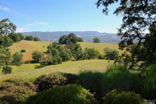 17501  Carriger Rd  , Sonoma, CA 95476 (#21508888) :: RE/MAX PROs