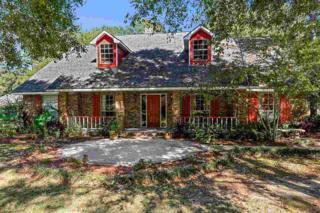 5248  Lesage Dr  , Greenwell Springs, LA 70739 (#2014001381) :: Darren James Real Estate Experts, LLC