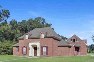 39248  Babin Rd  , Gonzales, LA 70737 (#2014001641) :: Darren James Real Estate Experts, LLC