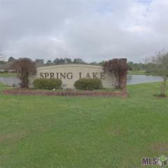 Lot 277  Springlake Dr  , Walker, LA 70785 (#2015003972) :: Darren James Real Estate Experts, LLC