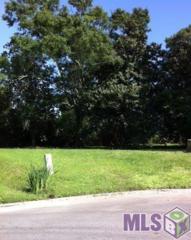 4  Crossing View Ct  , Baton Rouge, LA 70810 (#2015005502) :: Darren James Real Estate Experts, LLC
