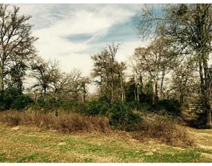 Lot 8  Abbey Lane  , Iola, TX 77861 (MLS #96302) :: The Traditions Realty Team