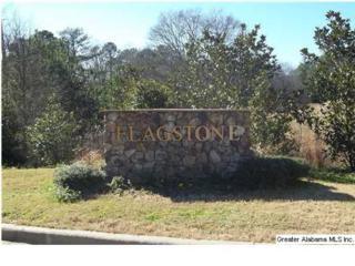 158  Flagstone Dr  15, Chelsea, AL 35043 (MLS #623641) :: The Mega Agent Real Estate Team at RE/MAX Advantage
