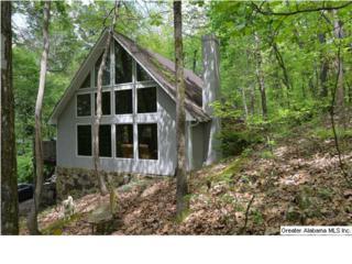 3  Oak Ridge Ln  , Pelham, AL 35124 (MLS #627503) :: The Mega Agent Real Estate Team at RE/MAX Advantage