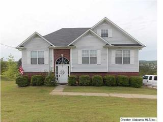 7315  Old Acton Rd  , Odenville, AL 35120 (MLS #630131) :: Howard Whatley