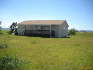 22971  Hidden Springs Rd  , Rapid City, SD 57703 (MLS #119411) :: The Rapid City Home Team