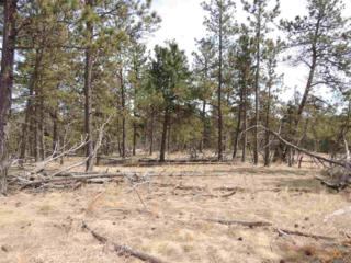 Lot 14  Other  , Hot Springs, SD 57747 (MLS #123136) :: The Rapid City Home Team