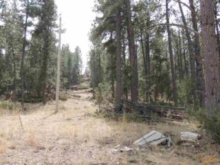 Lot 11  Other  , Hot Springs, SD 57747 (MLS #123138) :: The Rapid City Home Team