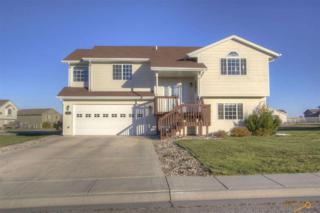 444  Daystar Rd  , Box Elder, SD 57719 (MLS #120634) :: The Rapid City Home Team