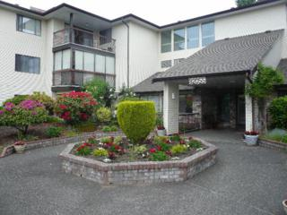 32055  Old Yale Road  308, Abbotsford, BC V2T 2C8 (#F1423961) :: RE/MAX Little Oak Realty