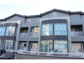 3366  Vanness Ave  , Vancouver, BC V5R 5A8 (#V1096621) :: RE/MAX City / Thomas Park Team