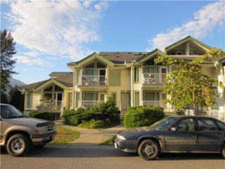 1275  Scott Drive  301, Hope, BC V0X 1L4 (#H1403448) :: RE/MAX Little Oak Realty