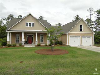 9317  National Ave NE , Leland, NC 28451 (MLS #683987) :: Coldwell Banker Sea Coast Advantage