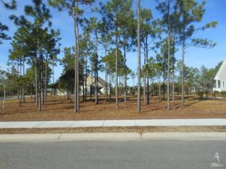 2852  Ellington Pl  , Southport, NC 28461 (MLS #688702) :: Coldwell Banker Sea Coast Advantage