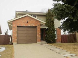28  Fallswater Crescent NE , Calgary, AB T3J 1B6 (#C3654365) :: Alberta Real Estate Group Inc.