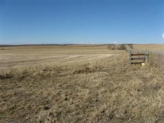 I  Twp Rd 292  , Water Valley, AB T0M 0R0 (#C4004277) :: The Cliff Stevenson Group