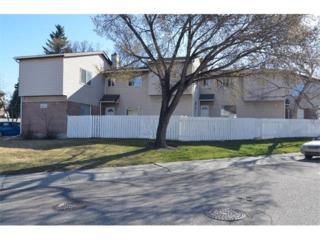 64  Whitnel Court NE 37, Calgary, AB T1Y 5E3 (#C4006562) :: Alberta Real Estate Group Inc.