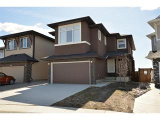 313  Walden Square SE , Calgary, AB T0L (#C4008480) :: The Cliff Stevenson Group