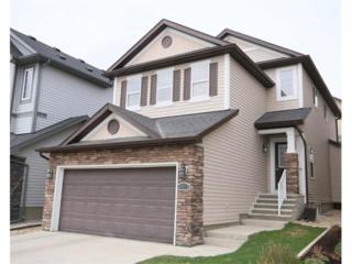 247  Kincora Glen Mews NW , Calgary, AB T3R 0B5 (#C4008573) :: McInnis Realty Group