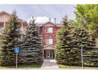 1415  17 Street SE 202, Calgary, AB T2G 3V3 (#C4013505) :: Alberta Real Estate Group Inc.